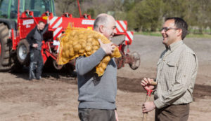 Bild: Auf dem Feld Personen mit Landmaschinen und Kartoffeln